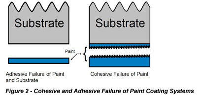 Cohesive and Adhesive Failure of Paint Coating Systems